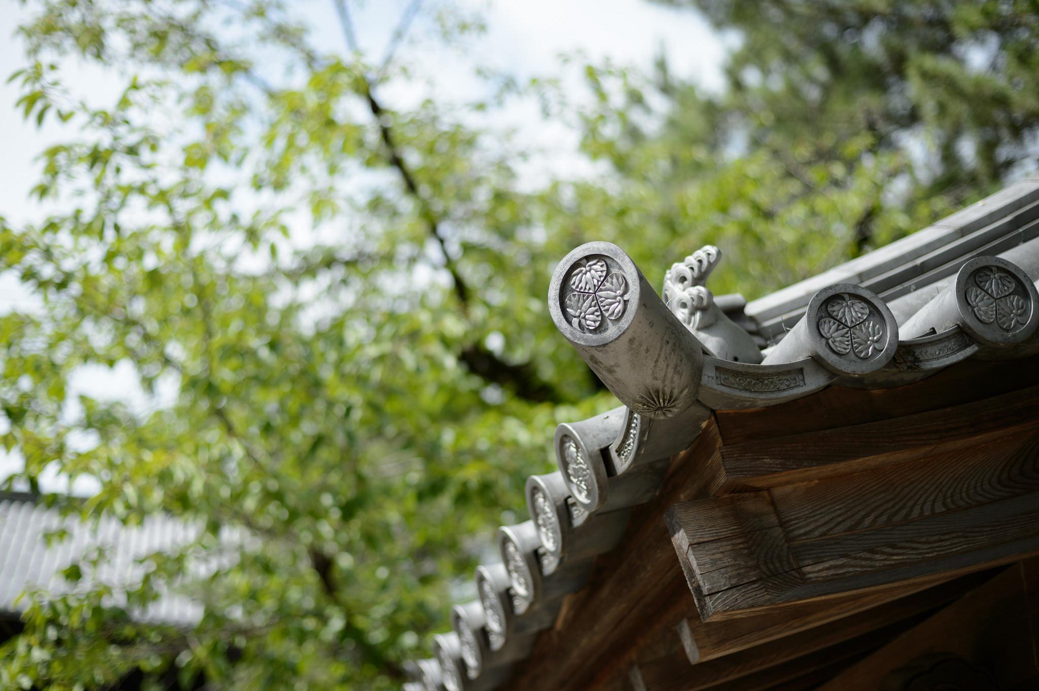 Roof of Daijuji temple Okazaki, Aichi