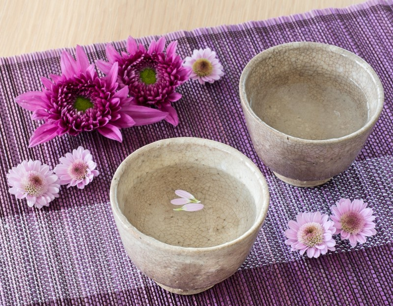 Hagi Pottery and purple flowers