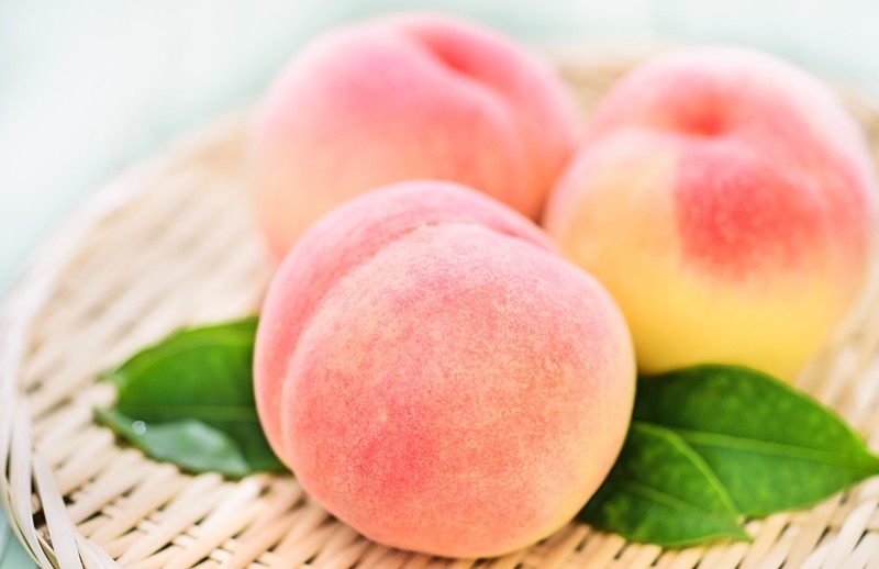 Japanese white peaches from Okayama prefecture