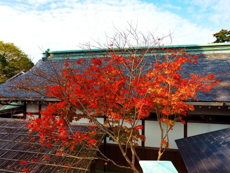 rooftop in Kagoshima