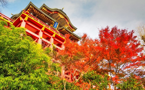 Red shrine and autumn leaves in Saga prefecture